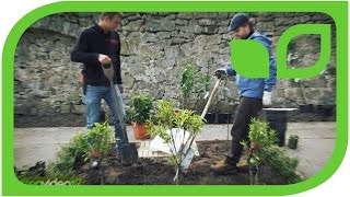 Impressionen von der Bepflanzung des Lubera Mundraubgartens auf Schloss Ippenburg
