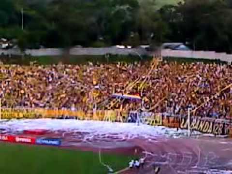 Avalancha Sur ( Salida Tachira 3 Carabobo 1 ) - Avalancha Sur - Deportivo Táchira - Venezuela - América del Sur