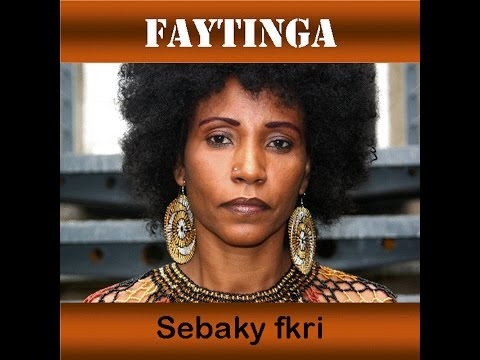 """SEBAKI FKRI"" (Official Audio) - New Eritrean music 2014"