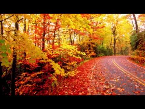 Romantic Music : The Beauty of Love - Aakash Gandhi,Relaxing Music, Piano Music