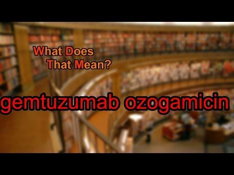What does gemtuzumab ozogamicin mean?