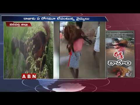 గ్రామస్థులను హడలెత్తిస్తున్న కమ్మరి రాజు వికృతి చేష్టలు | Wanaparthy District | Telangana | ABN
