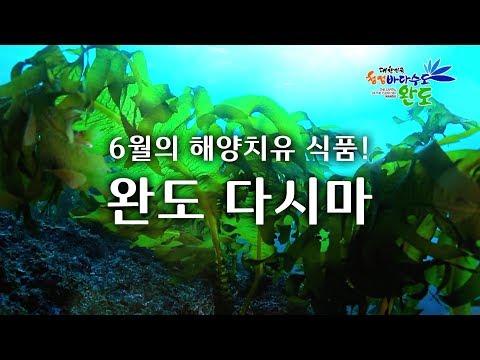 6월의 해양치유식품! 다시마! 동영상의 캡쳐 화면