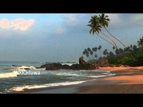 golden beaches -