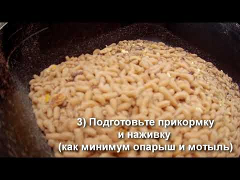 видео советы ради рыбаков
