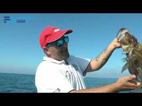 Italian Fishing TV - Scorziello - Traina Light