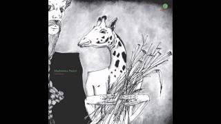Mushrooms Project - Undergrass - Album Promo