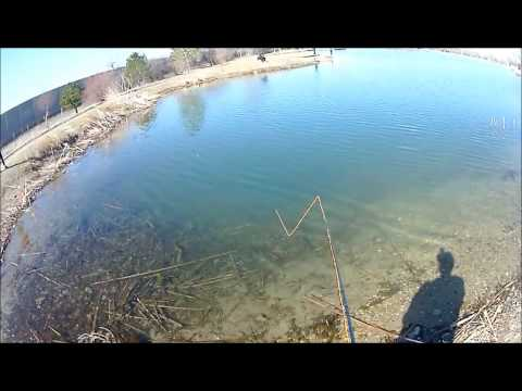 Fishing Trip: Fly Fishing Willow Pond 3/22/14