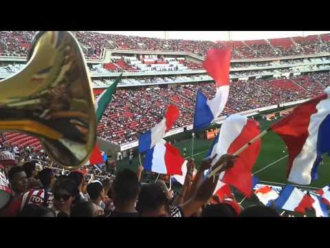 CHIVAS VS tigres 2014 (LFDG) - Legión 1908 - Chivas Guadalajara