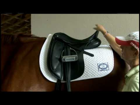How to Select the Correct Dressage Saddle