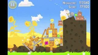 Angry Birds Seasons Summer Pignic Level 5 Walkthrough 3 Star