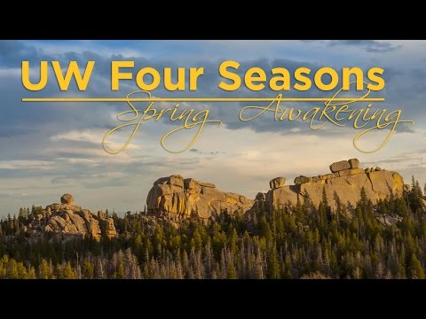 Video--UW Life || Four seasons: spring awakening