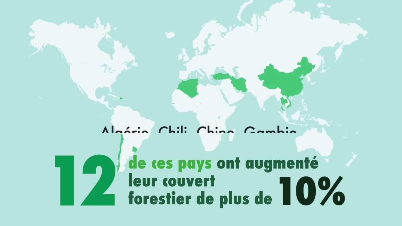 Situation des forêts du monde 2016 (AFD)