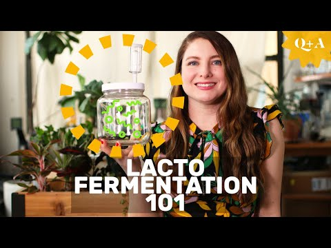 Fermentation 101: Guide To Lacto Fermenting Foods