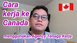 Video TKI Canada : Cara Kerja ke Kanada melalui Agency Tenaga Kerja MP3, 3GP, MP4, WEBM, AVI, FLV Januari 2019