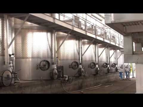 How Sonoma County Wine is made