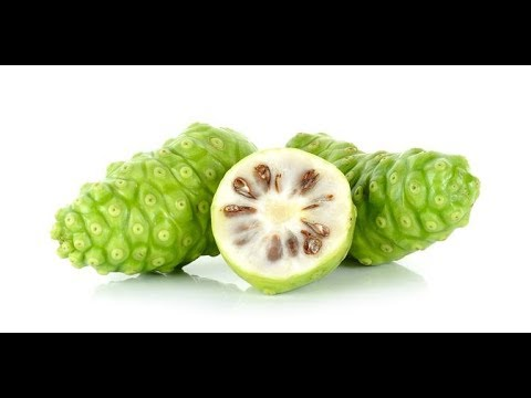 Noni | Immune System, Inflammation, Blood Pressure, Pain, Cancer, Tumors, Bacteria, Virus, Fungus