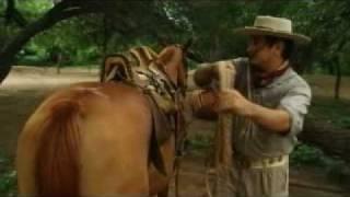 Dalmiro Cuellar - El cuatrero