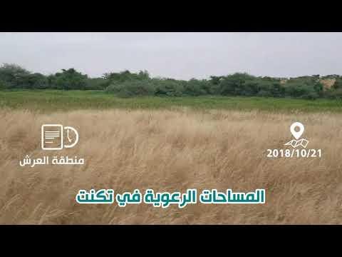 فيديو جديد يرصد وضعية العشب في منطقة تكنت
