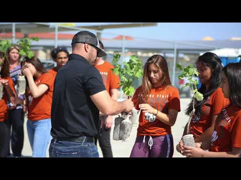 Doffo Winery Plants the first School Vineyard in Southern California