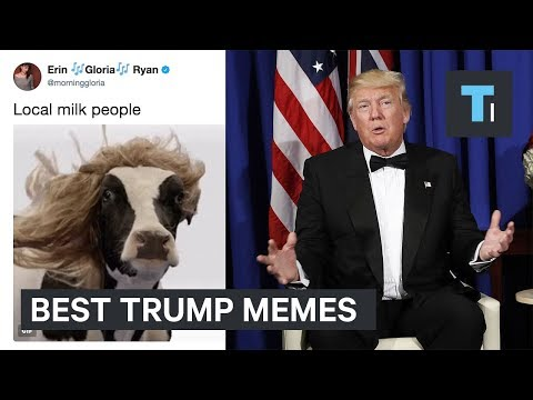 The 9 best memes from Trump's first 200 days in office