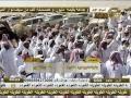 عرض الذاير و مره بكار سعيد بن شبنان البريدي المري