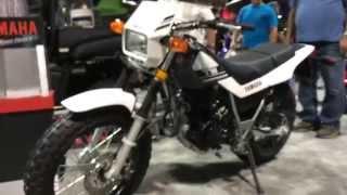 10. 2015 Yamaha TW200 Motorcycle