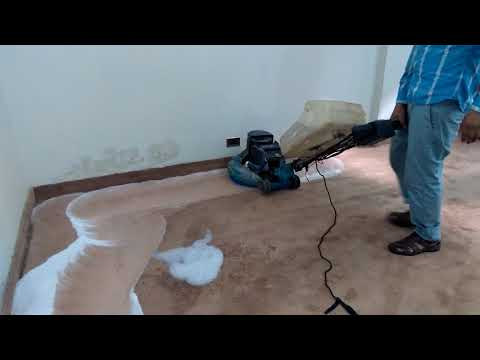 Carpet Shampooer Cleaning