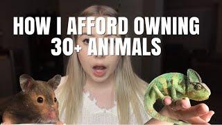 HOW DO I AFFORD OWNING SO MANY ANIMALS? by Emma Lynne Sampson