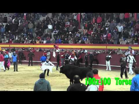 Encierro y Capea Valdemorillo 04   02   2012