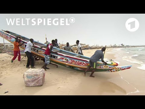 Senegal: Aussichtsloser Kampf der Fischer | Weltspiegel