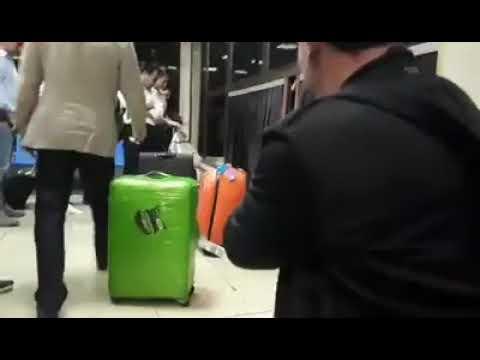 Новые технологии в старом терминале: как выдают багаж в Одесском аэропорту - Центр транспортных стратегий