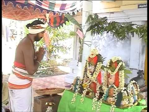 SRI NATARAJA SWAMY PRATHISTAI 2012 PART2