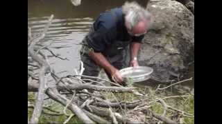 Glen Innes Australia  city photo : Digging for sapphires at the Old Mine, Yarrow Creek near Glen Innes NSW Australia (2)