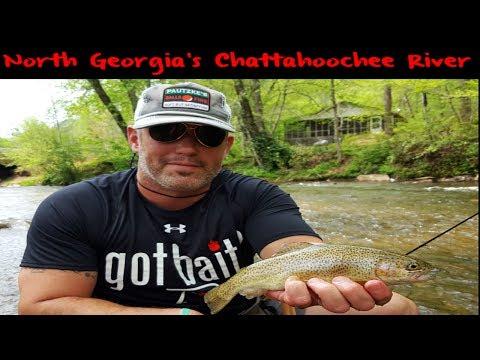 Trout Fishing Georgia's Chattahoochee River