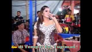 download lagu download musik download mp3 Areva Bidadari Keseleyo