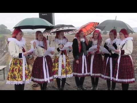TVS: Veselí nad Moravou 11. 10. 2016