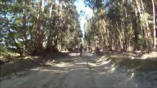 Maratona de Canha 2013