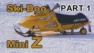 2. Ski-Doo Mini Z: Two Kids Riding PART 1  HDR-PJ790V