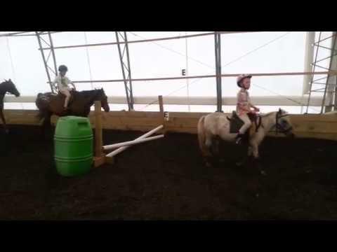 Summer Camp Beginner Horseback Riding Lessons in Arcade, NY
