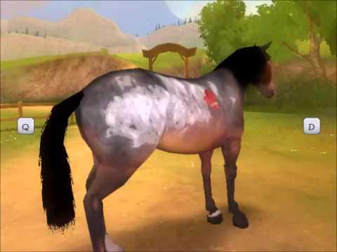 alexandra ledermann la colline aux chevaux sauvages wii solution
