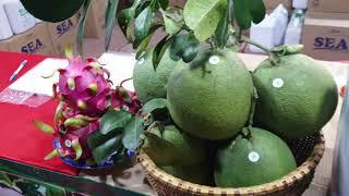 Công ty Thuận Thiên tham gia hội chợ ở Tây Ninh