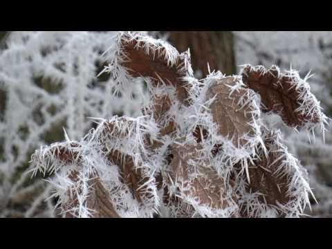 Kouzlo zimy v Milovicích