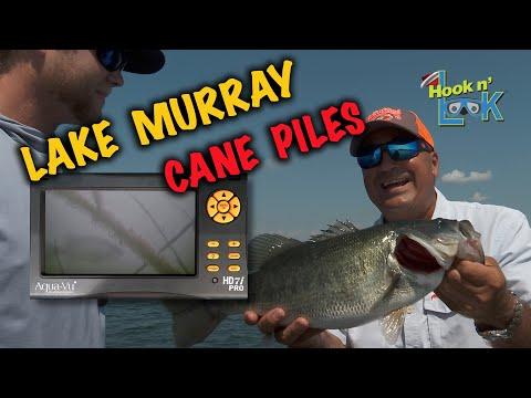 Lake Murray Cane PilesLake Murray Cane Piles<media:title />