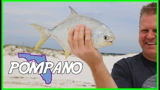 Surf Fishing For Pompano with Shrimp and Fishbites! Florida Panhandle