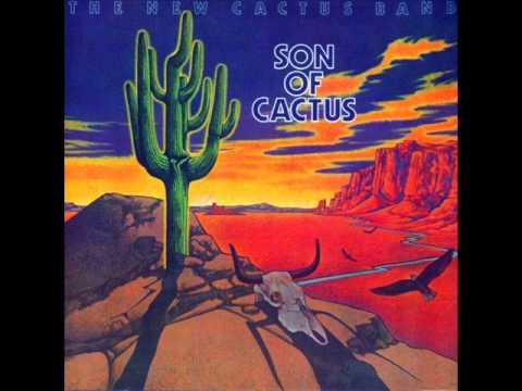 Tekst piosenki Cactus - Long Tall Sally po polsku