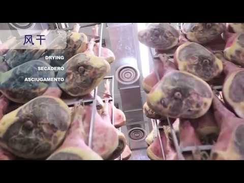 Frigoriferi per industria alimentare - Frigomeccanica