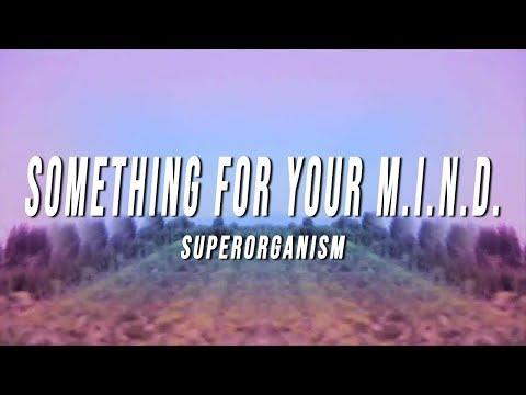 Superorganism - Something For Your M.I.N.D. (Lyrics)