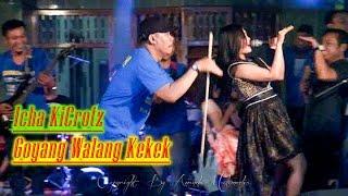 Goyang Walang Kekek Hitsnya Monata - Icha Kicrotz SAFANA #Video Viral Dangdut