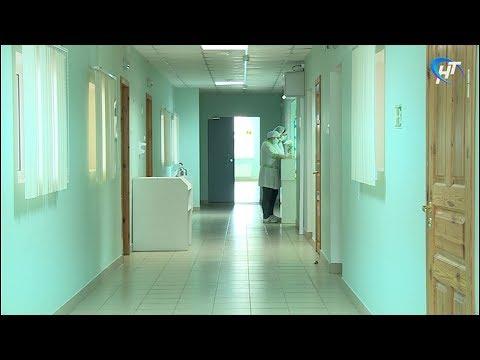 В Великом Новгороде закрылись школы на карантин по гриппу и ОРВИ